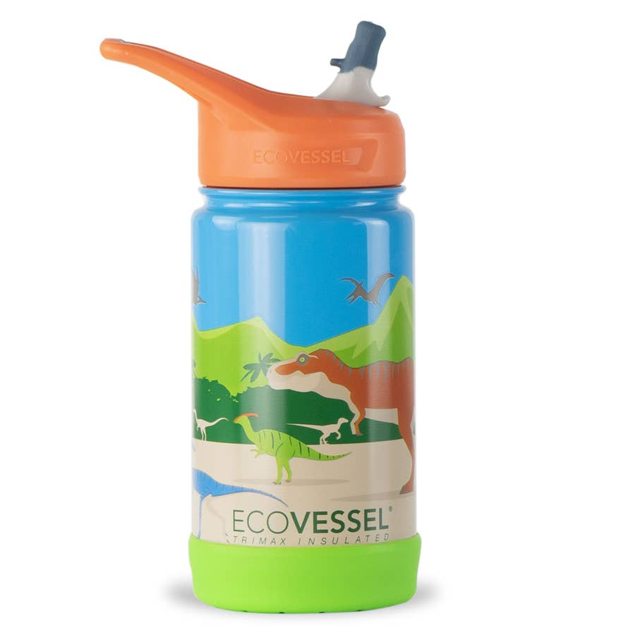 Frost Insulated Water Bottle | Dinosaur
