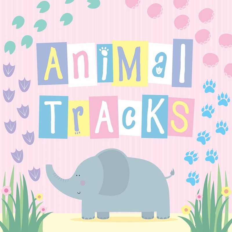 Animal Tracks board book