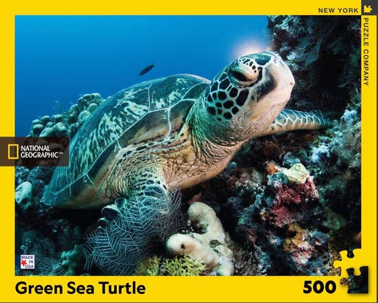 Green Sea Turtle 500 pc puzzle