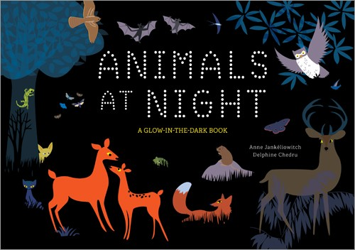 Animals at Night: A Glow in the Dark book